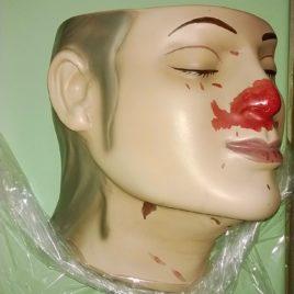 Forensic Model